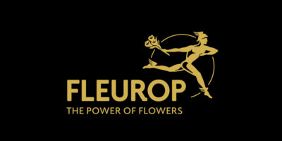 Fleurop Black Friday Schweiz